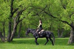 Νέος αναβάτης πλατών αλόγου που έχει την ευχαρίστηση στο δάσος Στοκ φωτογραφία με δικαίωμα ελεύθερης χρήσης