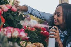 Νέος ανθοκόμος αφροαμερικάνων που ψεκάζει τα όμορφα λουλούδια Στοκ Εικόνες