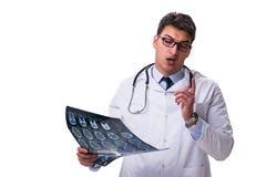 Νέος αρσενικός γιατρός που κρατά μια ακτηνογραφία απομονωμένη στο άσπρο backgro Στοκ εικόνες με δικαίωμα ελεύθερης χρήσης