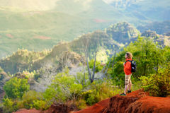 Νέος αρσενικός τουρίστας που απολαμβάνει τη θέα στο φαράγγι Waimea, Kauai, Χαβάη Στοκ Φωτογραφίες
