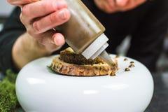 Νέος αρχιμάγειρας που προετοιμάζει το σύγχρονο μοριακό πιάτο με τη σάλτσα στοκ φωτογραφίες