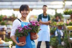Νέος ασιατικός ανθοκόμος δύο που εργάζεται στο κατάστημα στοκ εικόνες
