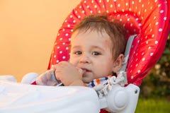 Νέος - γεννημένος με τα πολλαπλάσια δαγκώματα κουνουπιών Αλλεργία στα δαγκώματα εντόμων στοκ φωτογραφίες
