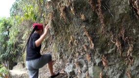 Νέος δίκαιος απότομος βράχος βουνών γυναικείας οδοιπορίας φιλμ μικρού μήκους