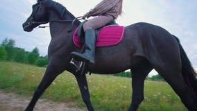 Νέος θηλυκός ιππικός στην πλάτη αλόγου που καλπάζει στην πορεία μέσω του λιβαδιού απόθεμα βίντεο