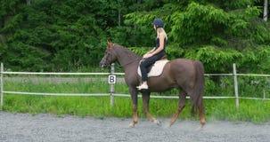 Νέος θηλυκός αναβάτης στο αραβικό άλογό της στο αγρόκτημα απόθεμα βίντεο