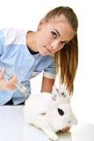 νέος θηλυκός κτηνιατρικός γιατρός που φέρνει ένα κουνέλι Στοκ Φωτογραφία