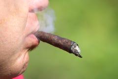 Νέος καπνιστής με το μακρύ κουβανικό πούρο στο στόμα του Στοκ εικόνες με δικαίωμα ελεύθερης χρήσης