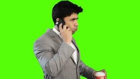 Νέος καφές κατανάλωσης επιχειρηματιών μιλώντας στο τηλέφωνο κυττάρων απόθεμα βίντεο