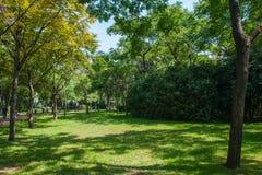 Νέος κεντρικός κήπος Hongqiao Στοκ Φωτογραφία