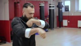 Νέος μαχητής Kung Fu απόθεμα βίντεο