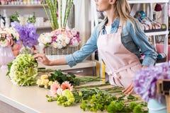 Νέος ξανθός ανθοκόμος στην ποδιά που τακτοποιεί τα όμορφα λουλούδια στο ανθοπωλείο Στοκ εικόνα με δικαίωμα ελεύθερης χρήσης