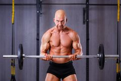 Νέος υγιής φαλακρός σχισμένος άνδρας με τους μεγάλους μυς που κρατά ένα barbell στοκ φωτογραφίες με δικαίωμα ελεύθερης χρήσης