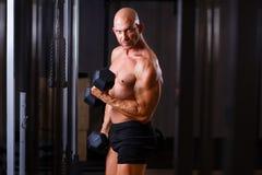 Νέος υγιής φαλακρός σχισμένος άνδρας με τους μεγάλους μυς που εκπαιδεύει με το dum στοκ φωτογραφία με δικαίωμα ελεύθερης χρήσης