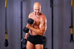 Νέος υγιής φαλακρός σχισμένος άνδρας με τους μεγάλους μυς που εκπαιδεύει με το dum στοκ φωτογραφίες με δικαίωμα ελεύθερης χρήσης