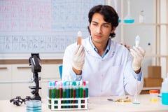 Νέος φαρμακοποιός που εργάζεται στο εργαστήριο στοκ φωτογραφίες