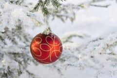 νέο έτος σφαιρών του s Στοκ Φωτογραφία
