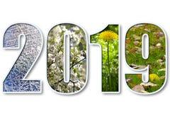 2019 νέο έτος Στοκ φωτογραφία με δικαίωμα ελεύθερης χρήσης