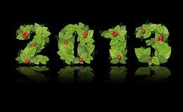 Νέο έτος 2013. Η 'Ημερομηνία' ευθυγράμμισε τα πράσινα φύλλα Στοκ Εικόνες