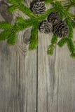 Νέο έτος ` s και Χριστούγεννα 12 Στοκ φωτογραφία με δικαίωμα ελεύθερης χρήσης