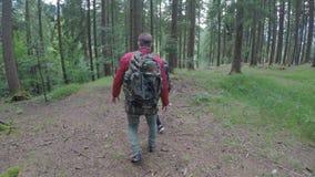 Νέο αγαπώντας ζεύγος των τουριστών στις διακοπές που εξερευνούν τα ξύλα βουνών που κρατούν μαζί τα χέρια και το φίλημα - φιλμ μικρού μήκους
