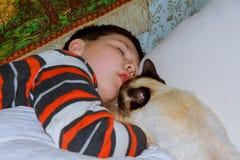 Νέο αγόρι με τη γάτα που στηρίζεται στο κρεβάτι στοκ φωτογραφίες