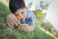 Νέο αγόρι που απολαμβάνει το Lollipop του που βάζει υπαίθρια στη χλόη Στοκ Φωτογραφία