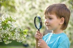 Νέο αγόρι που ερευνά τη φύση σε ένα λιβάδι με την ενίσχυση - γυαλί Στοκ εικόνες με δικαίωμα ελεύθερης χρήσης
