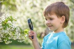 Νέο αγόρι που ερευνά τη φύση σε ένα λιβάδι με την ενίσχυση - γυαλί Στοκ Εικόνες