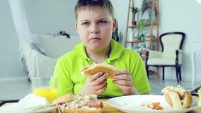 Νέο αγόρι που τρώει ένα χοτ-ντογκ φιλμ μικρού μήκους