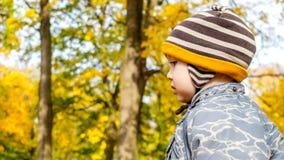Νέο αγόρι σε ένα πάρκο φθινοπώρου με τα δέντρα όλα γύρω Στοκ εικόνες με δικαίωμα ελεύθερης χρήσης