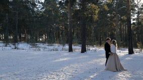 Νέο γαμήλιο ζεύγος που περπατά στο χιονώδες δάσος πεύκων wintertime υπαίθρια απόθεμα βίντεο