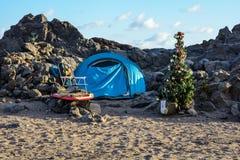 Νέο δέντρο έτους στην παραλία Tenerife στο νησί στοκ εικόνες