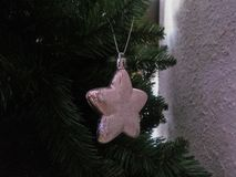 Νέο δέντρο έτους Χριστουγέννων Στοκ Εικόνα