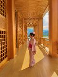 Νέο διακινούμενο θέσεων Hinoki κάστρο ύφους εδάφους ιαπωνικό που γίνεται από Hinoki Woods στοκ φωτογραφία