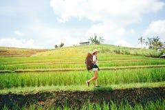 Νέο διακινούμενο κορίτσι που περπατά με το σακίδιο πλάτης μεταξύ των πεζουλιών ρυζιού στοκ εικόνες