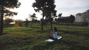 Νέο ελκυστικό κορίτσι που κάνει τις ασκήσεις, που βάζει και που τεντώνει σε ένα χαλί γιόγκας στο πάρκο Υγιής ενεργός έννοια φιλμ μικρού μήκους