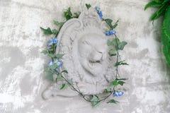 Νέο επικεφαλής άγαλμα λιονταριών στον τοίχο τσιμέντου με τον κισσό στο στούντιο στοκ εικόνα με δικαίωμα ελεύθερης χρήσης
