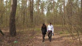 Νέο ερωτευμένο περπάτημα ζευγών στο δάσος απόθεμα βίντεο