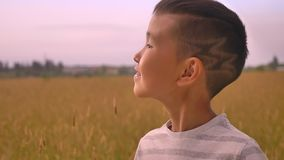 Νέο ευτυχές ασιατικό παιδί που απολαμβάνει το ηλιοβασίλεμα στον τομέα σίτου απόθεμα βίντεο