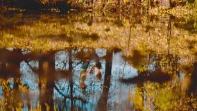 Νέο ευτυχές ζεύγος που χορεύει στην τράπεζα της λίμνης φιλμ μικρού μήκους