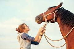 Νέο εύθυμο έφηβη που ηρεμεί το μεγάλο άλογο κάστανων πνευμάτων Στοκ φωτογραφίες με δικαίωμα ελεύθερης χρήσης