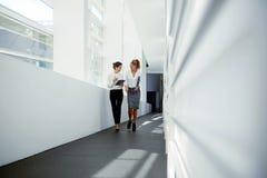 Νέο ελκυστικό θηλυκό μαξιλάρι αφής εκμετάλλευσης και ομιλία για κάτι εύθυμο στο συνεργάτη της Στοκ φωτογραφίες με δικαίωμα ελεύθερης χρήσης