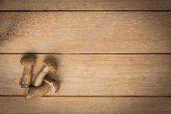 Νέο εδώδιμο καφετί ΚΑΠ Boletus μανιταριών στον ξύλινο πίνακα Στοκ εικόνα με δικαίωμα ελεύθερης χρήσης