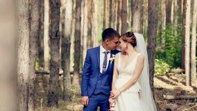 Νέο ζεύγος, ακριβώς παντρεμένο ερωτευμένο κάτω από τα τεράστια δέντρα Εξέταση η μια την άλλη απόθεμα βίντεο