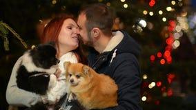 Νέο ζεύγος με την καυκάσια εμφάνιση που έχει τη διασκέδαση με το ζεύγος των σκυλιών Τα φω'τα και το δέντρο Christmass είναι στο υ φιλμ μικρού μήκους
