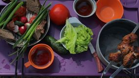 Νέο ζεύγος που έχει το πικ-νίκ σε έναν χορτοτάπητα Τοπ άποψη του πίνακα με τα τρόφιμα απόθεμα βίντεο