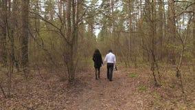 Νέο ζεύγος που περπατά στο δάσος και που κρατά τα χέρια απόθεμα βίντεο