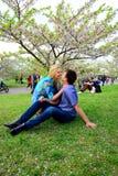 Νέο ζεύγος στον κήπο του sakura στο πάρκο Στοκ Φωτογραφία