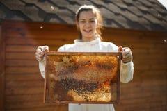 Νέο θηλυκό ξύλινο πλαίσιο λαβής μελισσοκόμων με την κηρήθρα Συλλέξτε το μέλι Έννοια μελισσοκομίας στοκ φωτογραφία